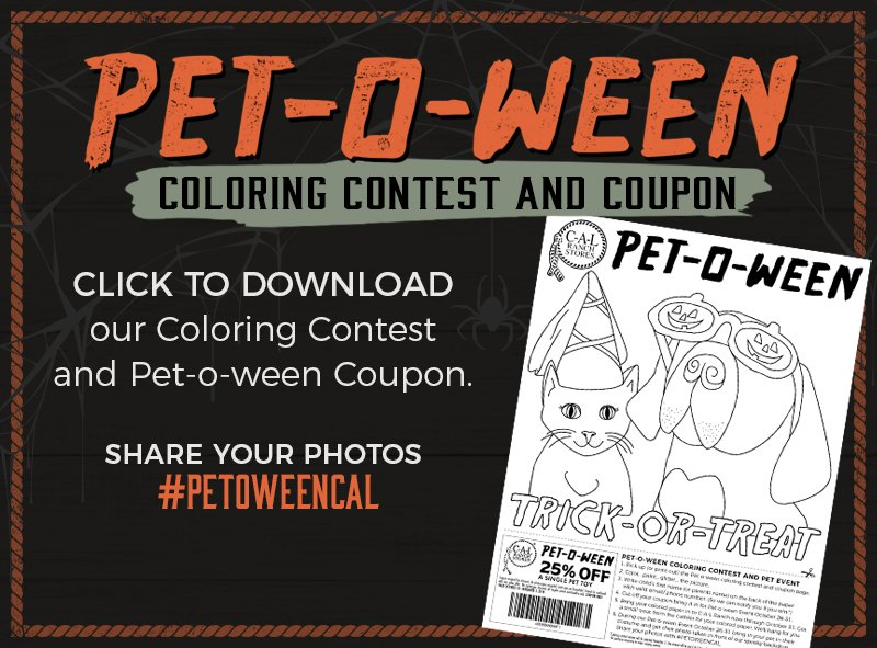 Petoween Coloring Page Contest Cat Dog Pet-o-ween